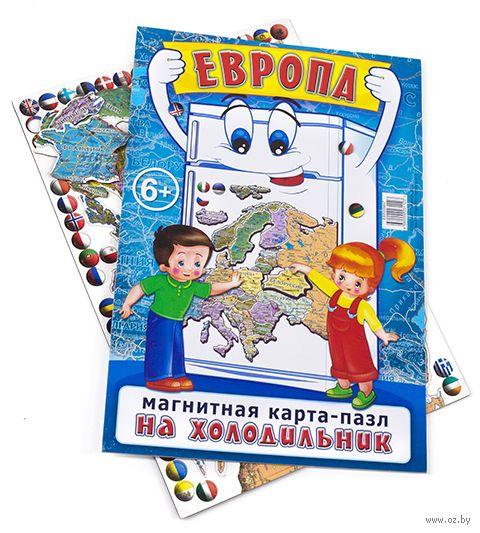 """Пазл магнитный """"Карта Европы"""" (52 элемента) — фото, картинка"""