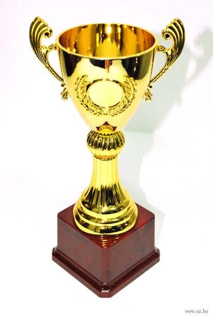 Кубок сувенирный (арт. HB2070-B) — фото, картинка