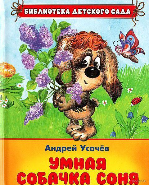 Умная собачка Соня — фото, картинка