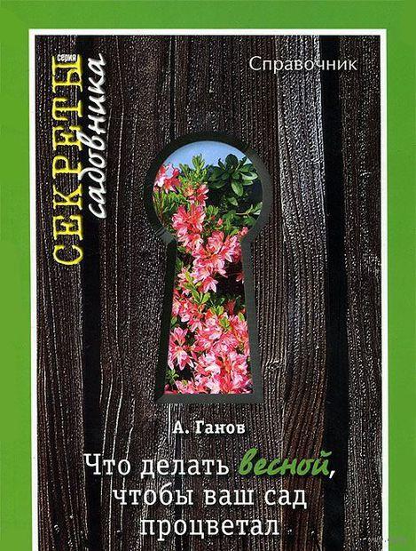 Что делать весной, чтобы ваш сад процветал. А. Ганов