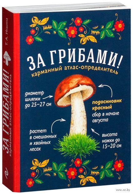 За грибами. Карманный атлас-определитель. Татьяна Ильина