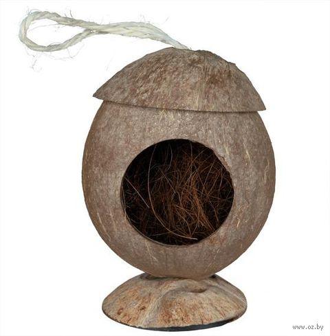 Домик из кокосовой скорлупы для грызунов (13х31 см) — фото, картинка