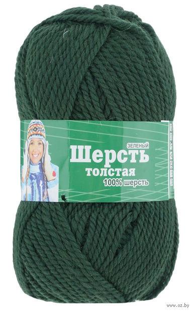Астра. Wool XL (зеленый; 100 г; 110 м) — фото, картинка