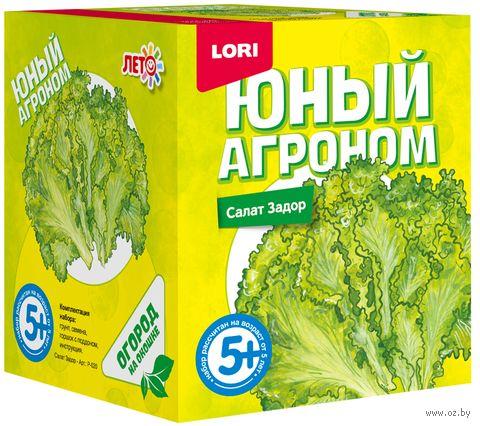 """Набор для выращивания растений """"Салат Задор"""" — фото, картинка"""