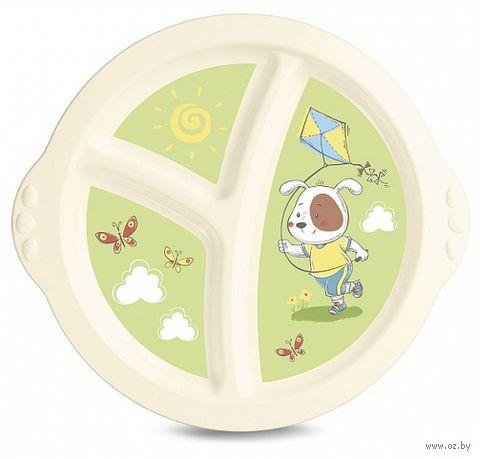 Тарелка пластиковая (арт. 4313064) — фото, картинка