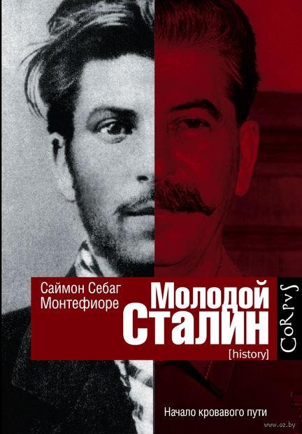 Молодой Сталин. Себаг Монтефиоре