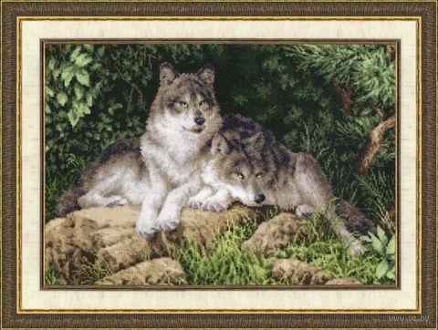 """Вышивка крестом """"Лесные хищники"""" (245х350 мм) — фото, картинка"""