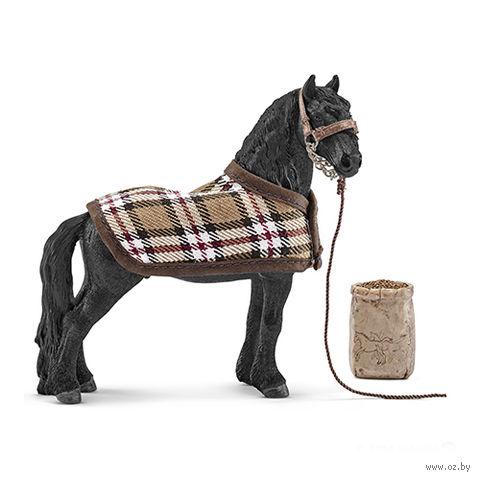 """Набор """"Уход за лошадьми. Фризский конь"""""""