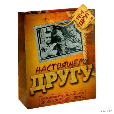 """Пакет бумажный подарочный """"Настоящему другу"""" (12х15х6 см; арт. 10570545)"""