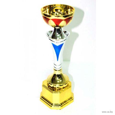 Кубок сувенирный (арт. HB7002C) — фото, картинка