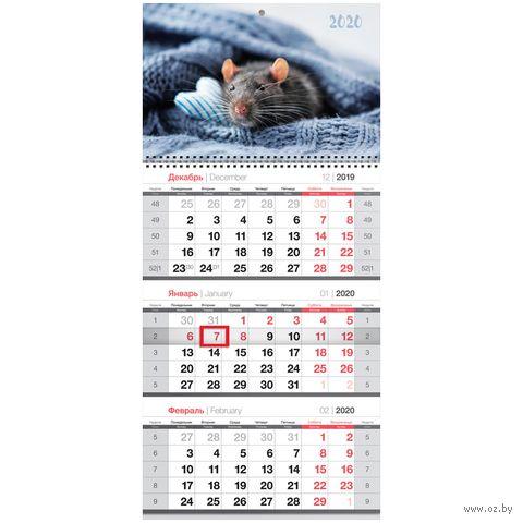 """Календарь настенный квартальный на 2020 год """"Символ года"""" (29,5х65 см) — фото, картинка"""