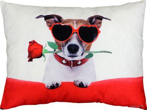 """Подушка """"С розой в зубах"""" (47x37 см; арт. 09-443) — фото, картинка"""
