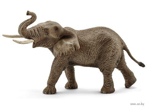 """Фигурка """"Африканский слон. Самец"""" (12,3 см) — фото, картинка"""