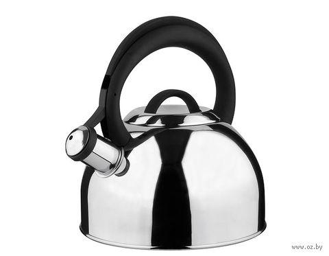"Чайник металлический со свистком ""Basel"" (2,5 л) — фото, картинка"