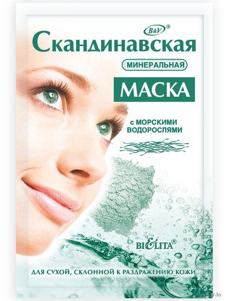 """Маска для лица """"Скандинавская. Минеральная"""" (20 г) — фото, картинка"""