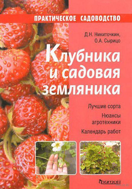 Клубника и садовая земляника. Ольга Сырицо, Д. Никиточкин