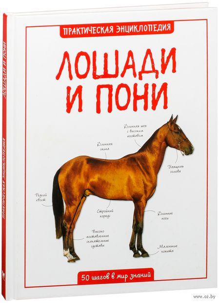 Лошади и пони. Камила де ла Бедуайер
