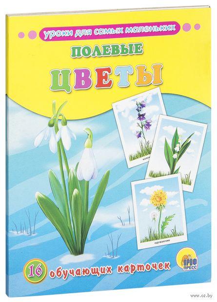 Полевые цветы. 16 обучающих карточек