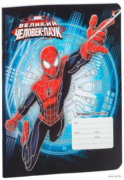 """Тетрадь в клетку """"Человек-паук"""" (12 листов; в ассортименте) — фото, картинка"""