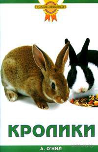 Кролики. Аманда О`Нил