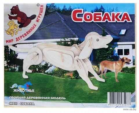 """Сборная деревянная модель """"Собака"""" — фото, картинка"""