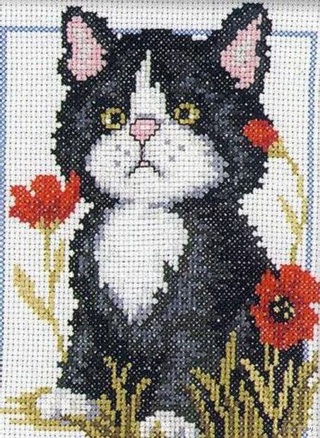 """Вышивка крестом """"Чёрный котёнок"""" (120x160 мм) — фото, картинка"""