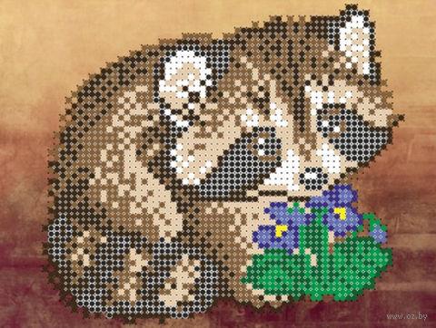 """Вышивка бисером """"Маленький енот"""" (120х160 мм) — фото, картинка"""