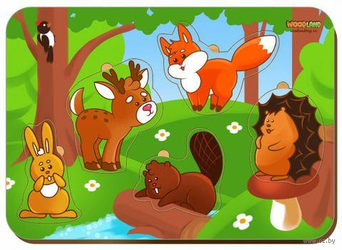 """Рамка-вкладыш """"Лесные животные"""" — фото, картинка"""