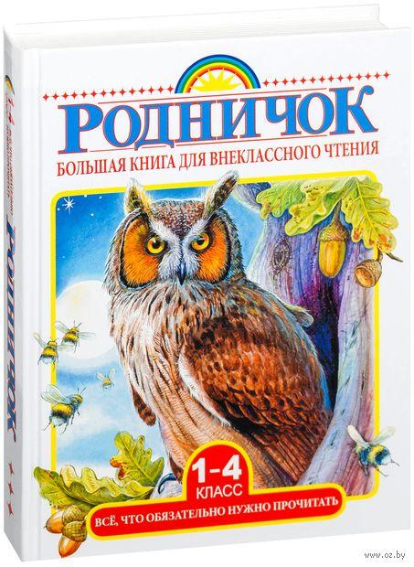 Большая книга для внеклассного чтения. 1-4 класс — фото, картинка