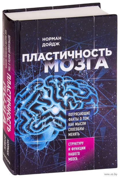 Пластичность мозга. Потрясающие факты о том, как мысли способны менять структуру и функции нашего мозга — фото, картинка