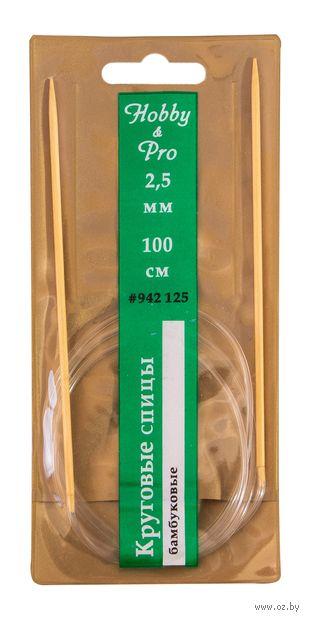 Спицы круговые для вязания (бамбук; 2,5 мм; 100 см) — фото, картинка