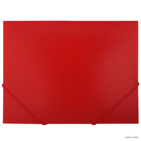 "Папка на резинке ""Darvish"" (А4; красная; арт. DV055R)"