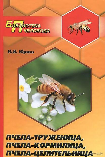 Пчела-труженица, пчела-кормилица, пчела-целительница. Николай Юраш