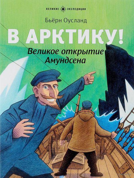 В Арктику! Великое открытие Амундсена. Бьерн Оусланд