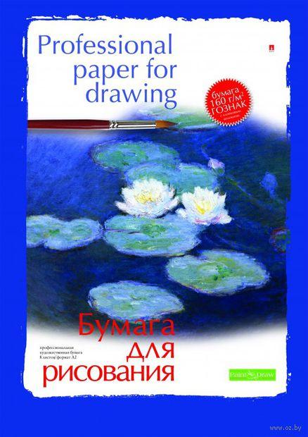Папка для рисования (А2; 8 листов) — фото, картинка