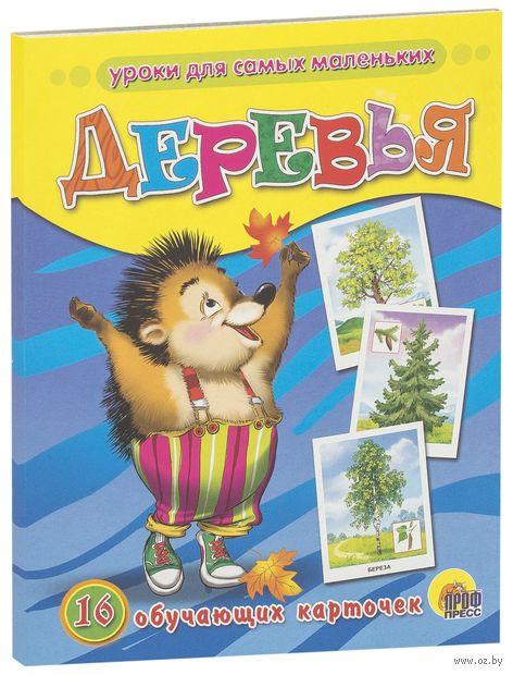 Деревья. 16 обучающих карточек