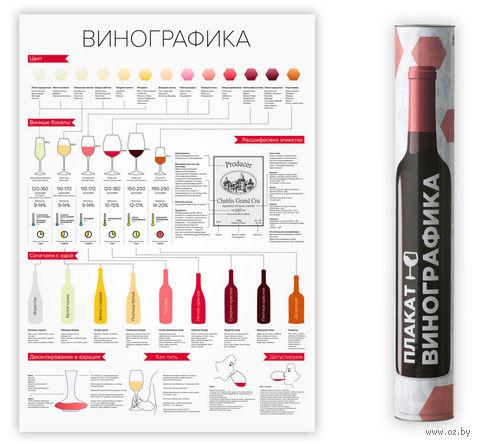 "Постер ""Винографика"" (420х594 мм) — фото, картинка"