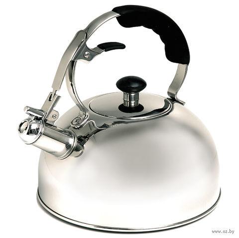 Чайник металлический со свистком (2,5 л; арт. Mr-1336) — фото, картинка