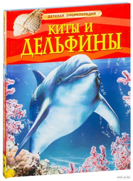 Киты и дельфины — фото, картинка