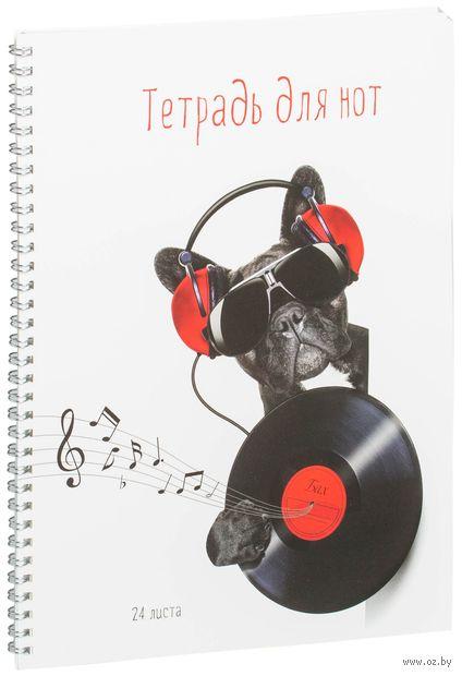 Тетрадь для нот (24 листа; арт. ТдН24сп_11857)
