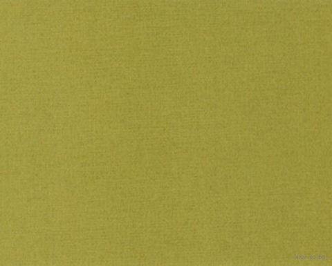 Паспарту (13x18 см; арт. ПУ2853) — фото, картинка