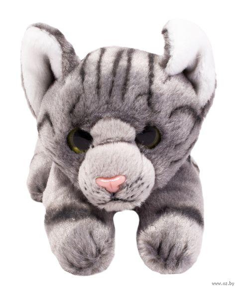 "Мягкая игрушка ""Кот Вилли"" (12 см) — фото, картинка"
