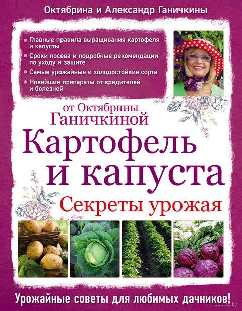 Картофель и капуста. Секреты урожая от Октябрины Ганичкиной. Октябрина Ганичкина