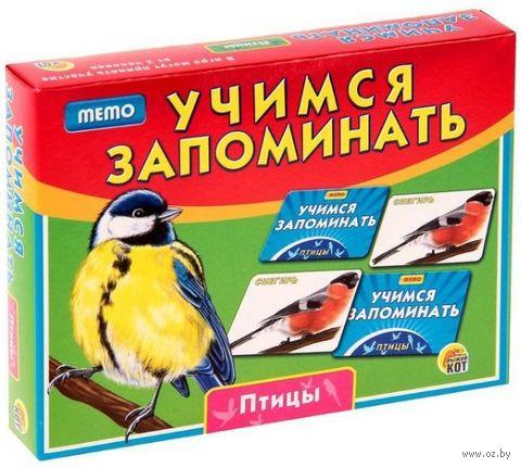 Учимся запоминать. Птицы — фото, картинка