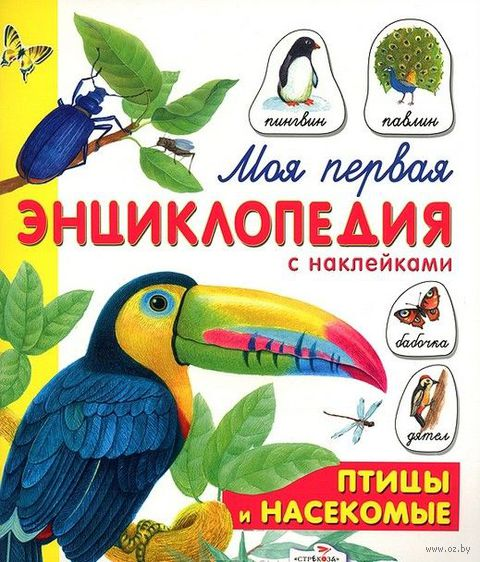 Птицы и насекомые. Е. Дроздова, Ольга Александрова