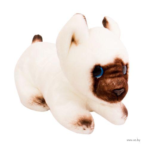 "Мягкая игрушка ""Кошка Сима"" (12 см)"
