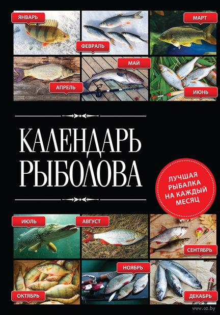 Календарь рыболова. Лучшая рыбалка на каждый месяц года. Владимир Казанцев