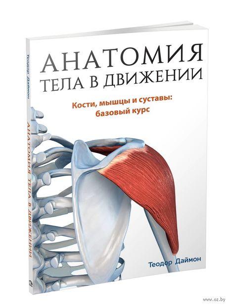 Анатомия тела в движении — фото, картинка