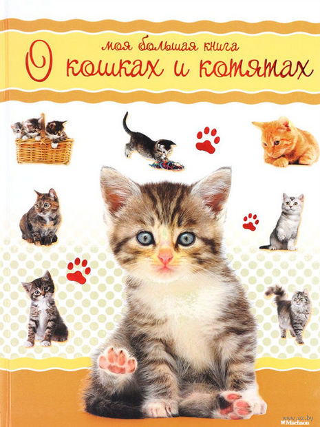 Моя большая книга о кошках и котятах. Натали Коэ