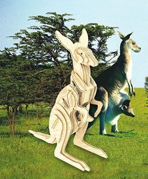 """Сборная деревянная модель """"Кенгуру"""" — фото, картинка"""